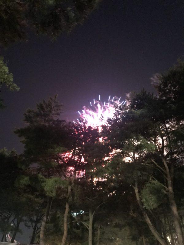 「アツかった『ROCK IN JAPAN』1週目」の巻
