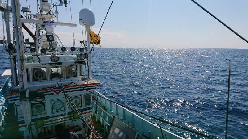 「27時間テレビ」突きん棒漁ロケのこぼれ話